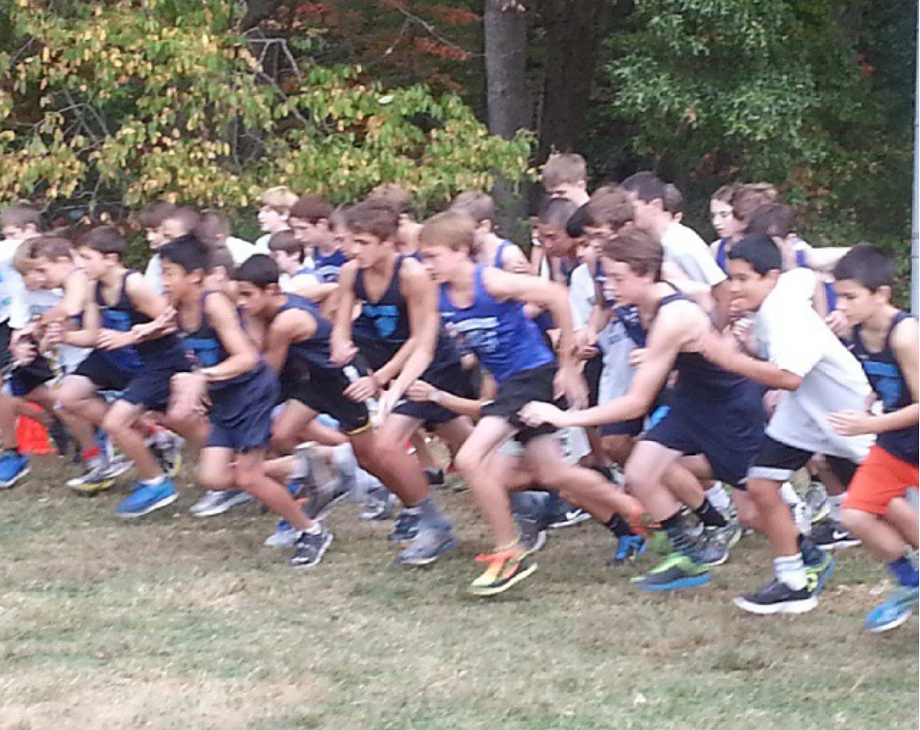 Picture of the start of a cross country meet